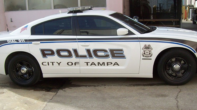 tampa police white car with black and blue line design