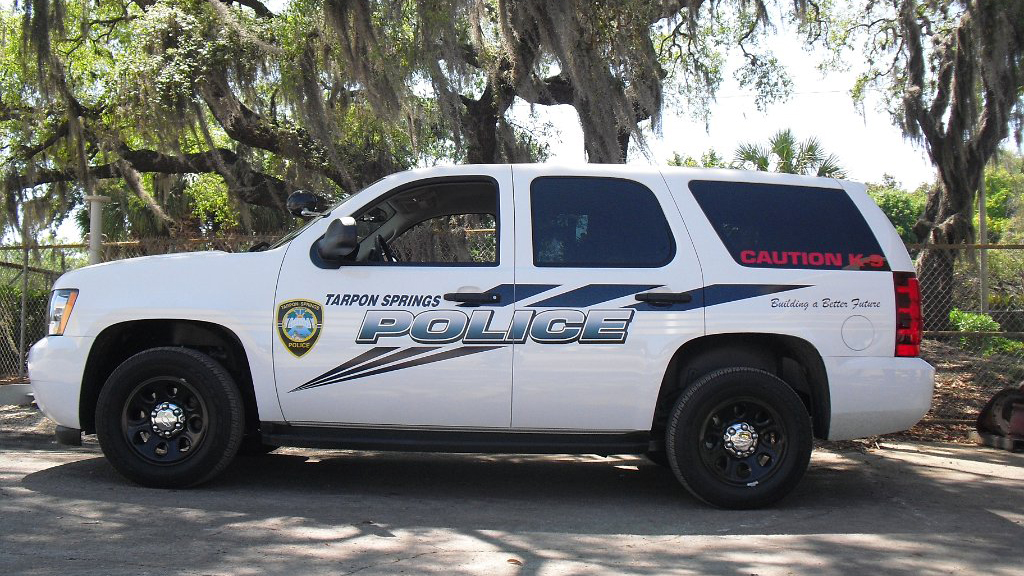 tarpon springs white police car with blue design parked near the tree